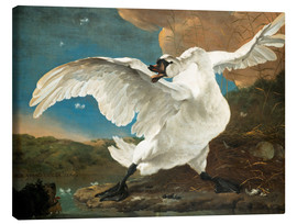 Canvastavla  The Threatened Swan - Jan Asselijn