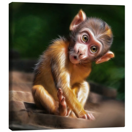 Canvastavla  Baby Monkey - Photoplace Creative