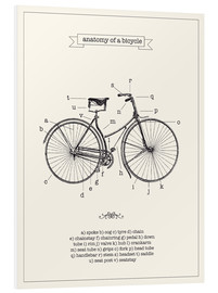 PVC-tavla  Vintage parts of a bicycle anatomy - Nory Glory Prints
