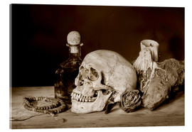 Akrylglastavla  Still Life - skull, ancient book, dry rose and candle