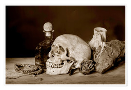 Premiumposter  Still Life - skull, ancient book, dry rose and candle