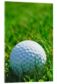 Akrylglastavla  Golf ball in the grass