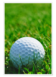 Premiumposter  Golf ball in the grass