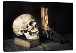 Canvastavla  Still Life with Skull