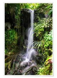 Premiumposter  Waterfall in Harz - Dennis Stracke