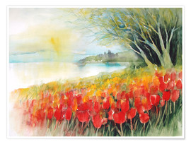 Premiumposter  Tulips blossoms in Ueberlingen on Lake Constance - Eckard Funck