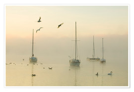 Premiumposter  A misty morning over Lake Windermere Lake District