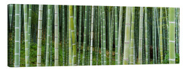 Canvastavla  Green bamboo forest in Kyoto, Japan - Jan Christopher Becke