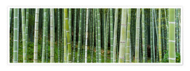 Premiumposter  Green bamboo forest in Kyoto, Japan - Jan Christopher Becke