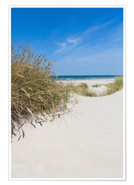 Premiumposter  Dunes and the sea