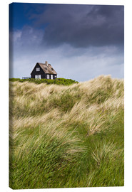 Canvastavla  Cottage in the dunes during storm