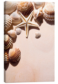 Canvastavla  Starfish and shells