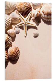 PVC-tavla  Starfish and shells