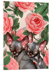 Akrylglastavla  Sphynx kitten with roses - Mandy Reinmuth