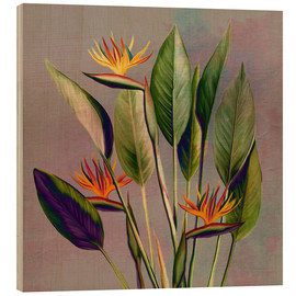 Trätavla  Flamingo flower - strelitzia - Mandy Reinmuth