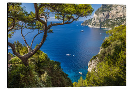 Aluminiumtavla  Wonderful sea view in Capri (Italy) - Christian Müringer