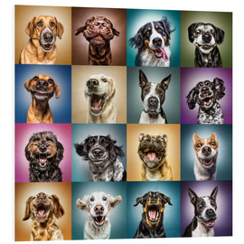 PVC-tavla  Funny dog faces - Manuela Kulpa