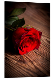 Akrylglastavla  Red rose on wood