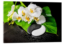 Akrylglastavla  White orchids and Yin-Yang stones