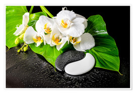 Premiumposter  White orchids and Yin-Yang stones