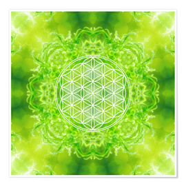 Premiumposter  Flower of Life - Healing Power of Nature - Dolphins DreamDesign