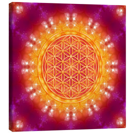 Canvastavla  Flower of Life - Abundance - Dolphins DreamDesign