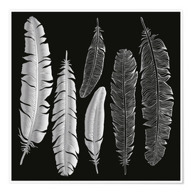 Premiumposter Feathers in silver
