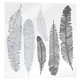 Akrylglastavla  Feathers on white