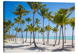 Canvastavla  Juanillo Beach, Cap Cana, Punta Cana, Dominican Republic, West Indies, Caribbean, Central America - Jane Sweeney