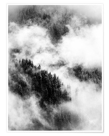 Premiumposter Cloudy treetops of the nearby mountain