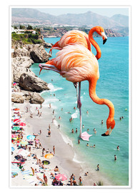 Premiumposter  Flamingos on the beach - Uma 83 Oranges