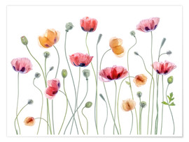 Poster  Papaver Party - Mandy Disher