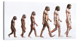 Canvastavla  human evolution - Lionel Bret