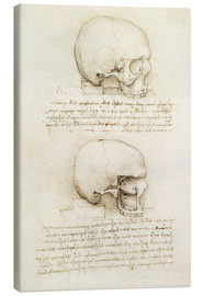 Canvastavla  The skull - Leonardo da Vinci