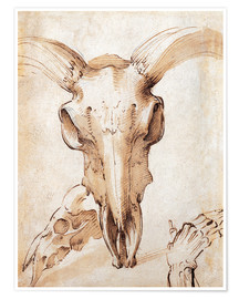 Premiumposter Skull of a cow