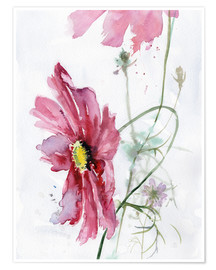 Premiumposter  Cosmos flower watercolor - Verbrugge Watercolor