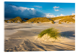 Akrylglastavla  Dunes on the island of Amrum, North Sea