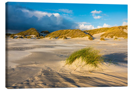 Canvastavla  Dunes on the island of Amrum, North Sea