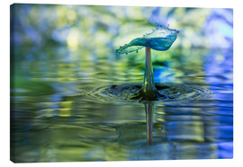 Canvastavla  Water drops with bokeh - Stephan Geist