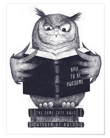 Premiumposter  Reading owl - Valeriya Korenkova