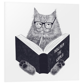 PVC-tavla  Reading cat - Valeriya Korenkova