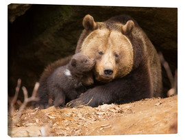 Canvastavla  Brown bear with young bear - Dieter Meyrl