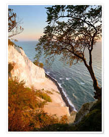 Premiumposter  Chalk cliffs of Møns Klint - Andreas Vitting