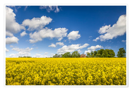 Premiumposter  Spring in yellow and blue on Bornholm - Christian Müringer