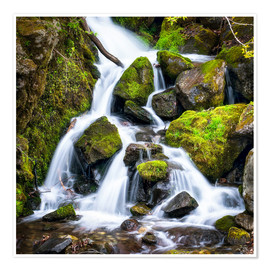 Premiumposter  Waterfall in the forest near Triberg, Black Forest - Jan Christopher Becke