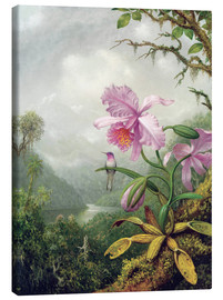 Canvastavla  Hummingbird Perched on an Orchid Plant - Martin Johnson Heade
