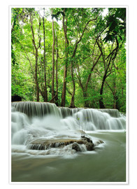 Premiumposter  Waterfall in forest of Thailand