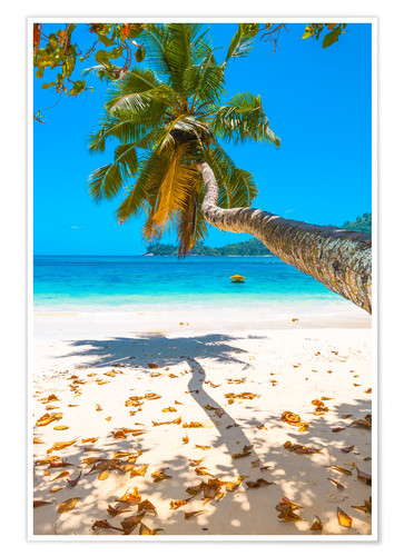 Premiumposter Sea view with palm tree