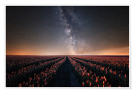 Premiumposter Tulip field and Milky Way
