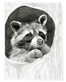 Premiumposter  Raccoon In A Hollow Tree Sketch - Ashley Verkamp